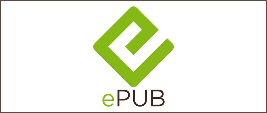 ebook format