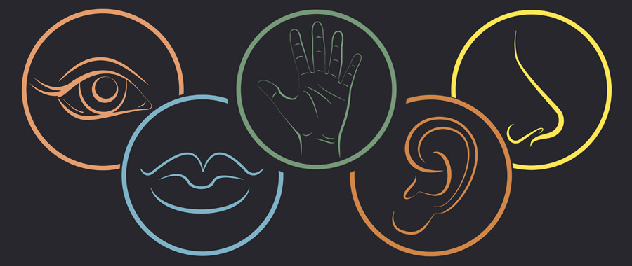enrich your writing using all five senses