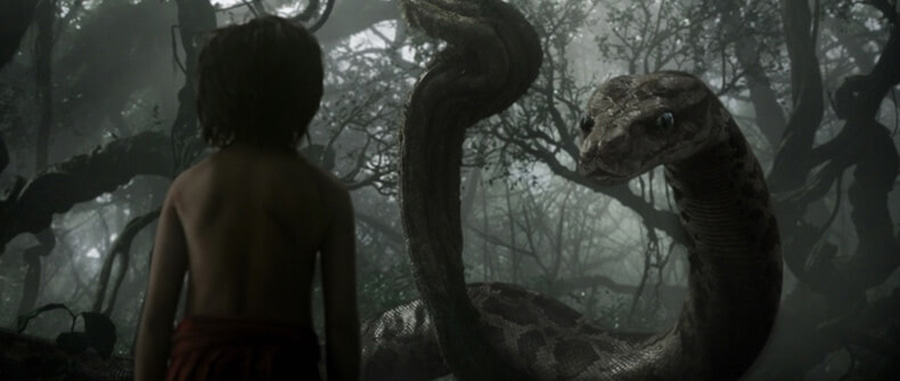 Jungle Book Kaa