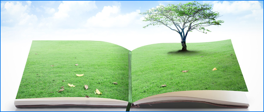 holiday book marketing earth day
