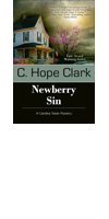 stages of publishing Newberry Sin Cover